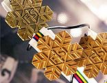 FIS-Medaillen