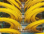 Netzwerkkabel in einem Serverkasten