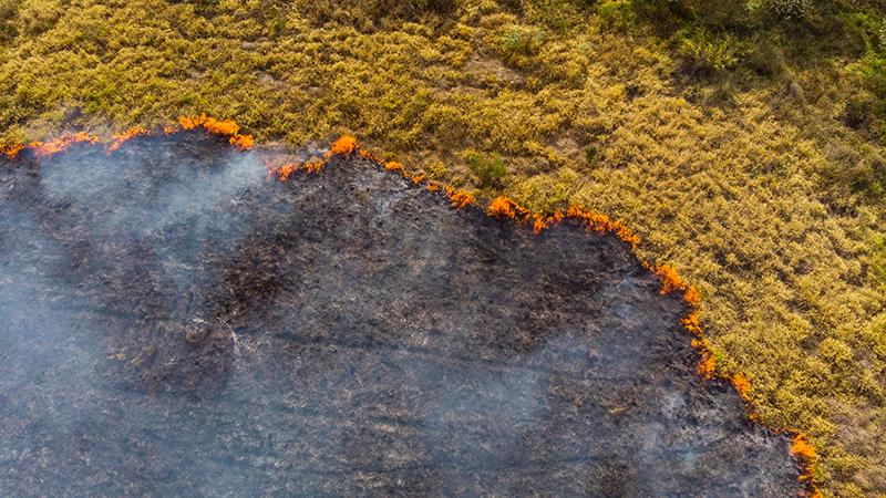 Feld mit Feuer und verbrannter Erde von oben