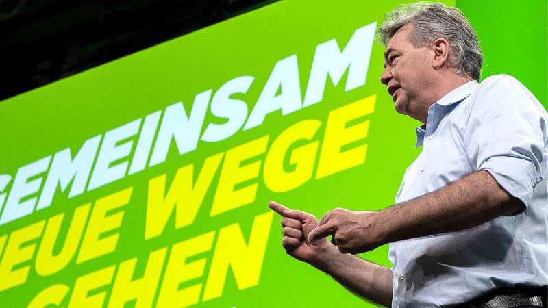 Werner Kogler, Bundessprecher der Grünen